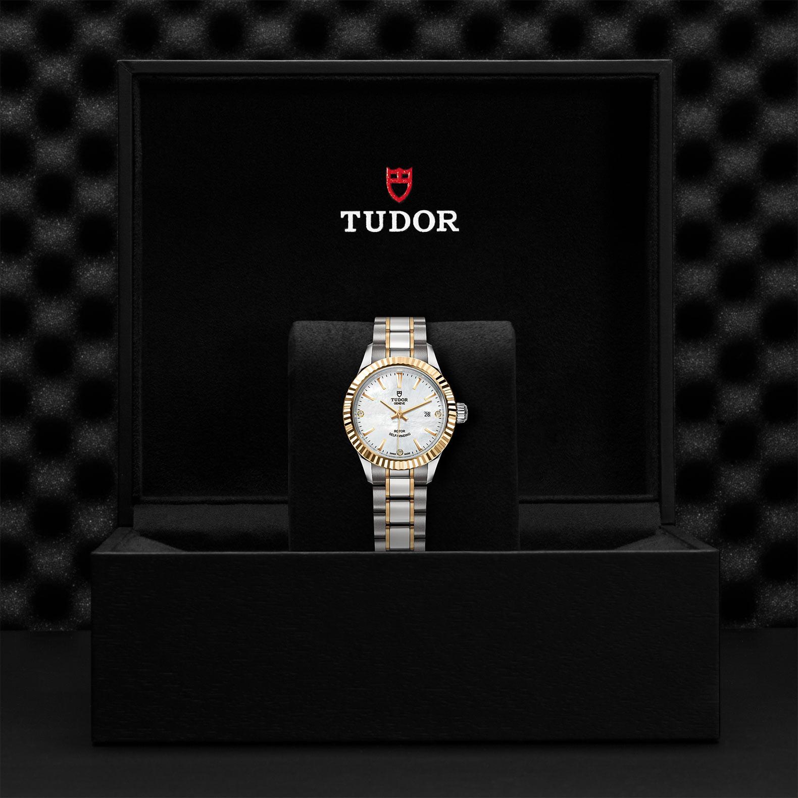 Tudor_M12113-0017