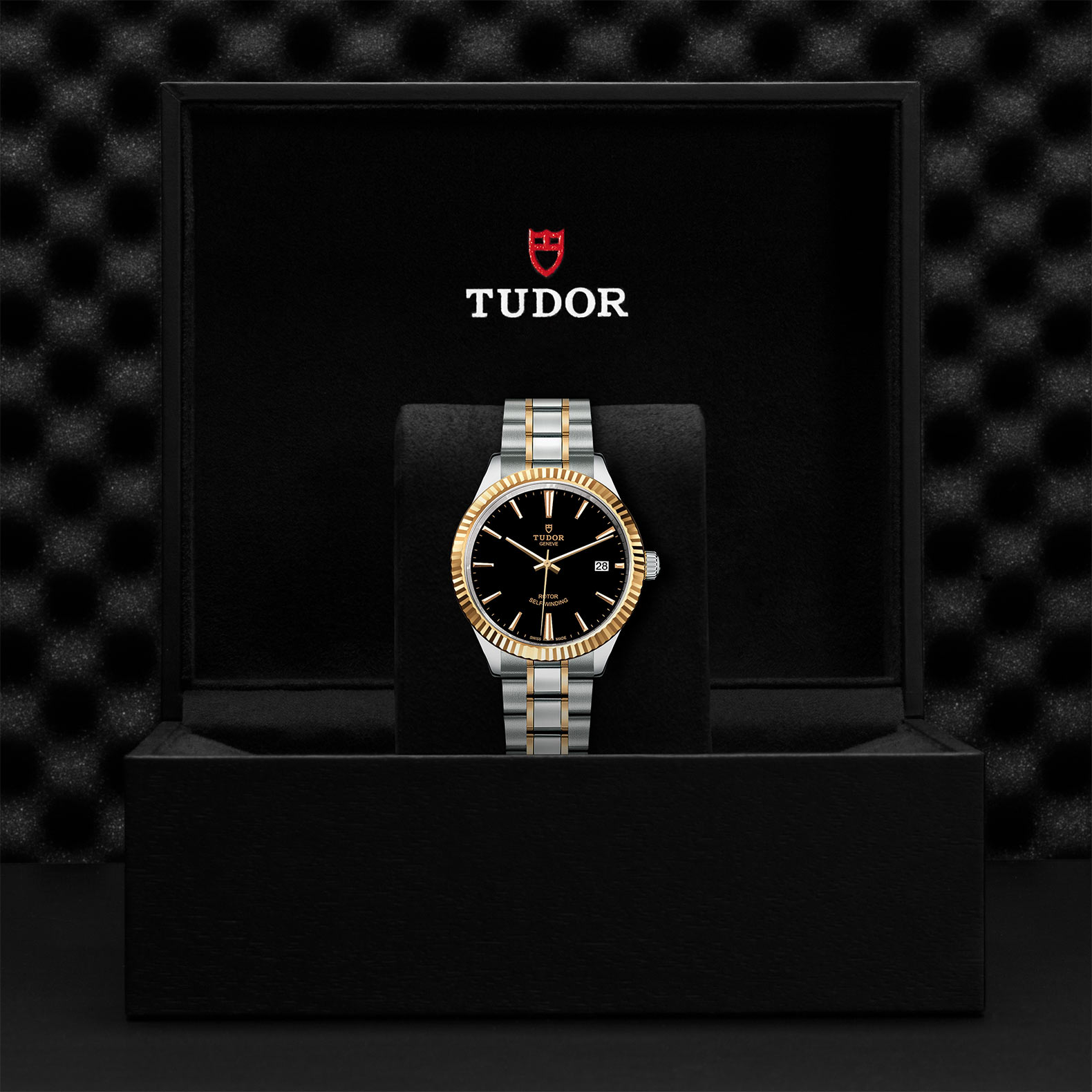 Tudor_M12513-0005