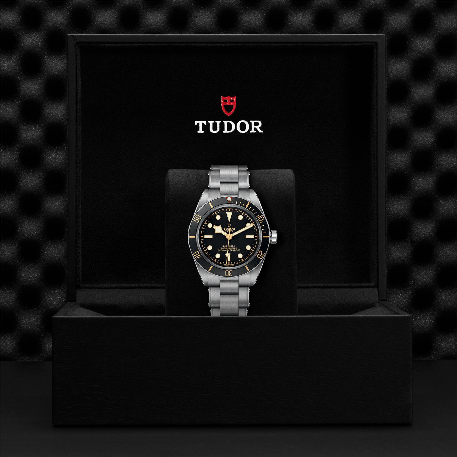 Tudor_M79030n-0001