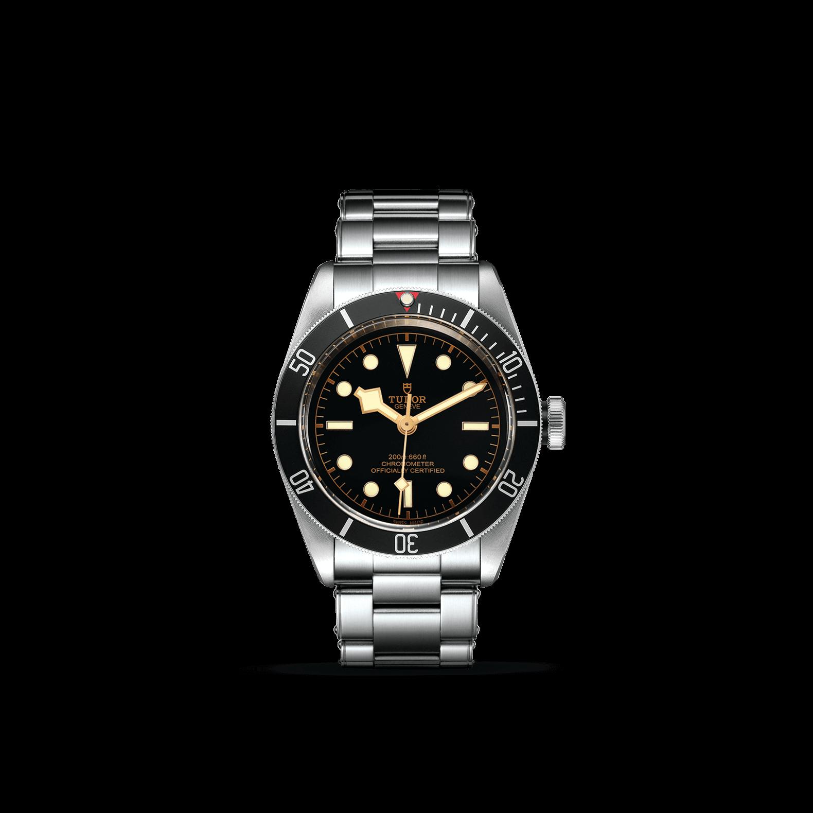 Tudor_M79230n-0009