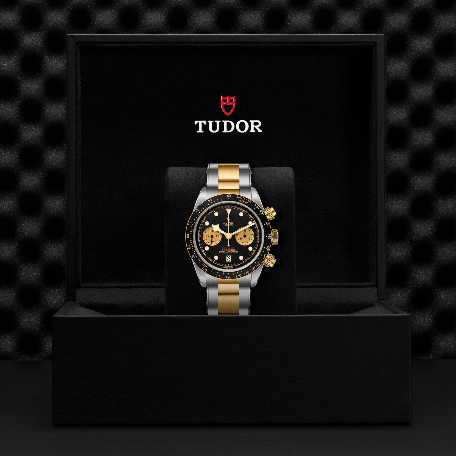 Tudor_M79363n-0001