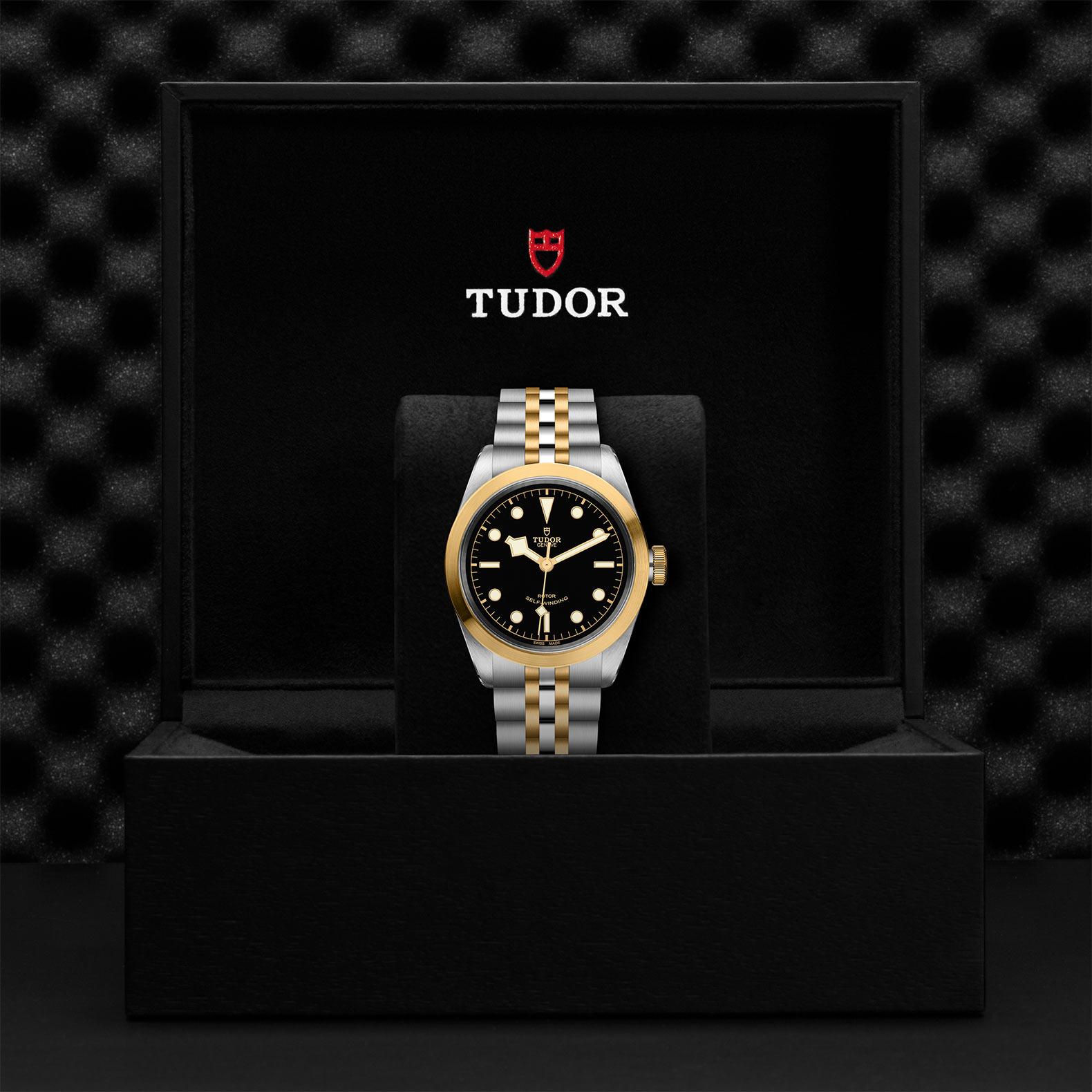 Tudor_M79543-0001