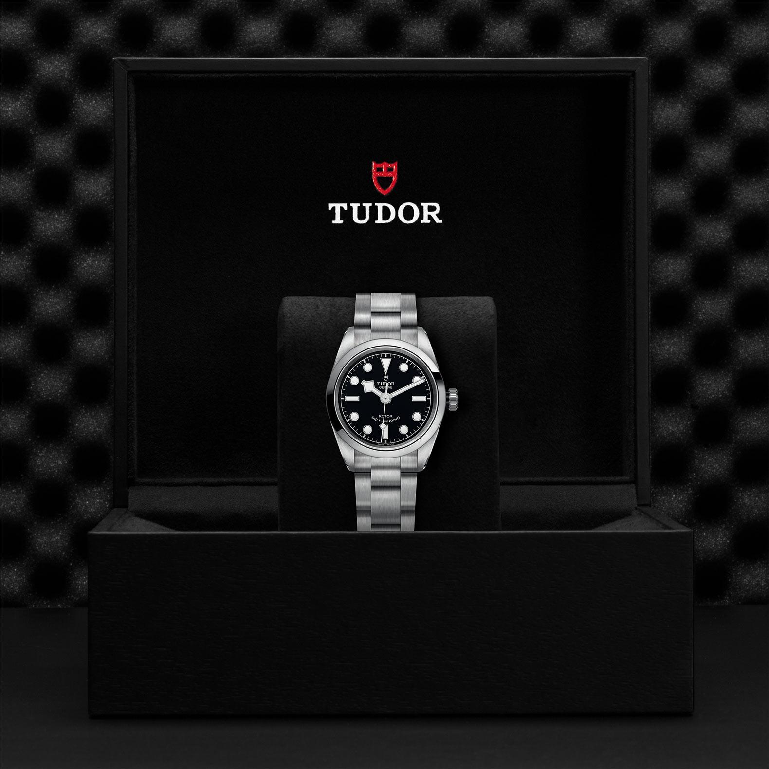 Tudor_M79580-0001