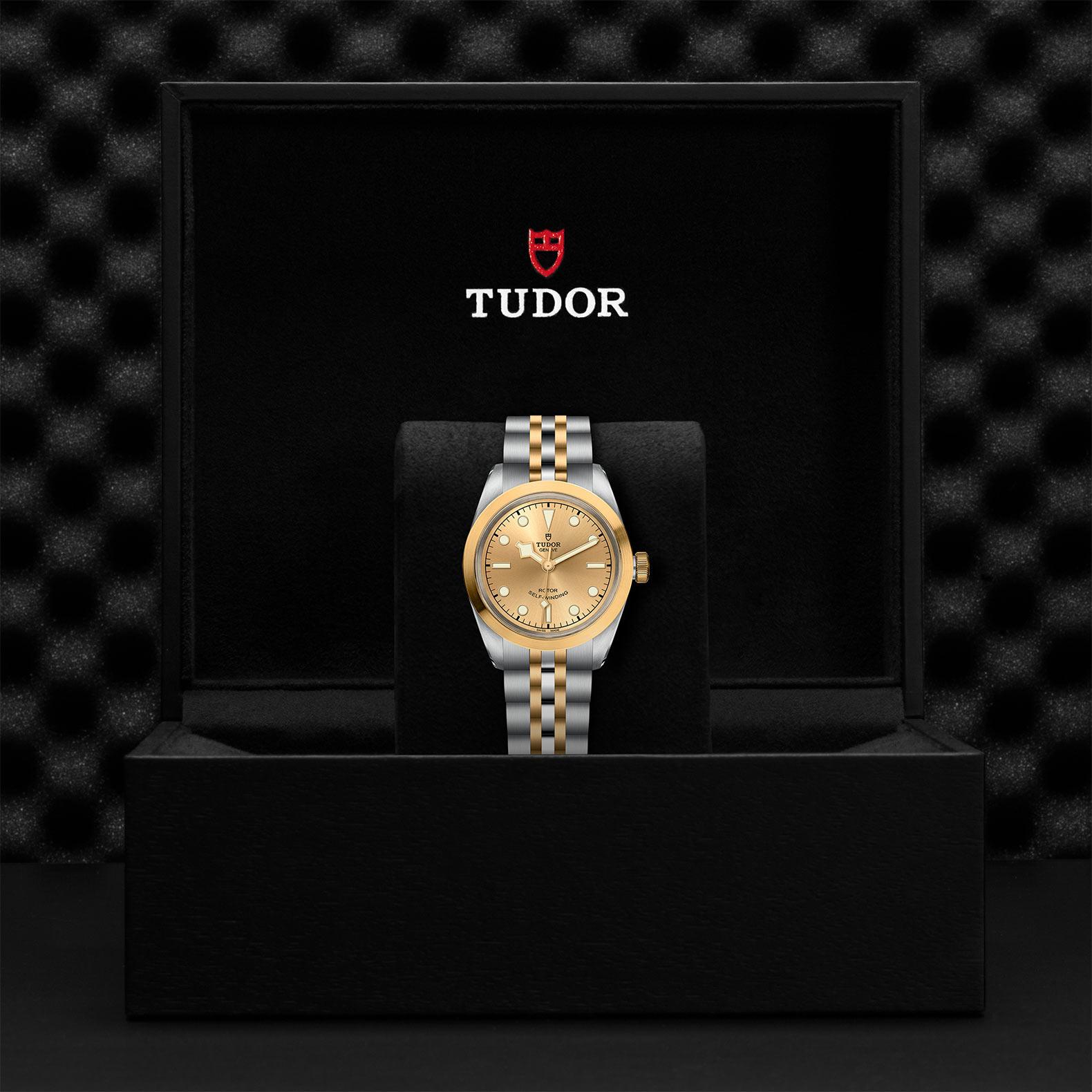 Tudor_M79583-0002