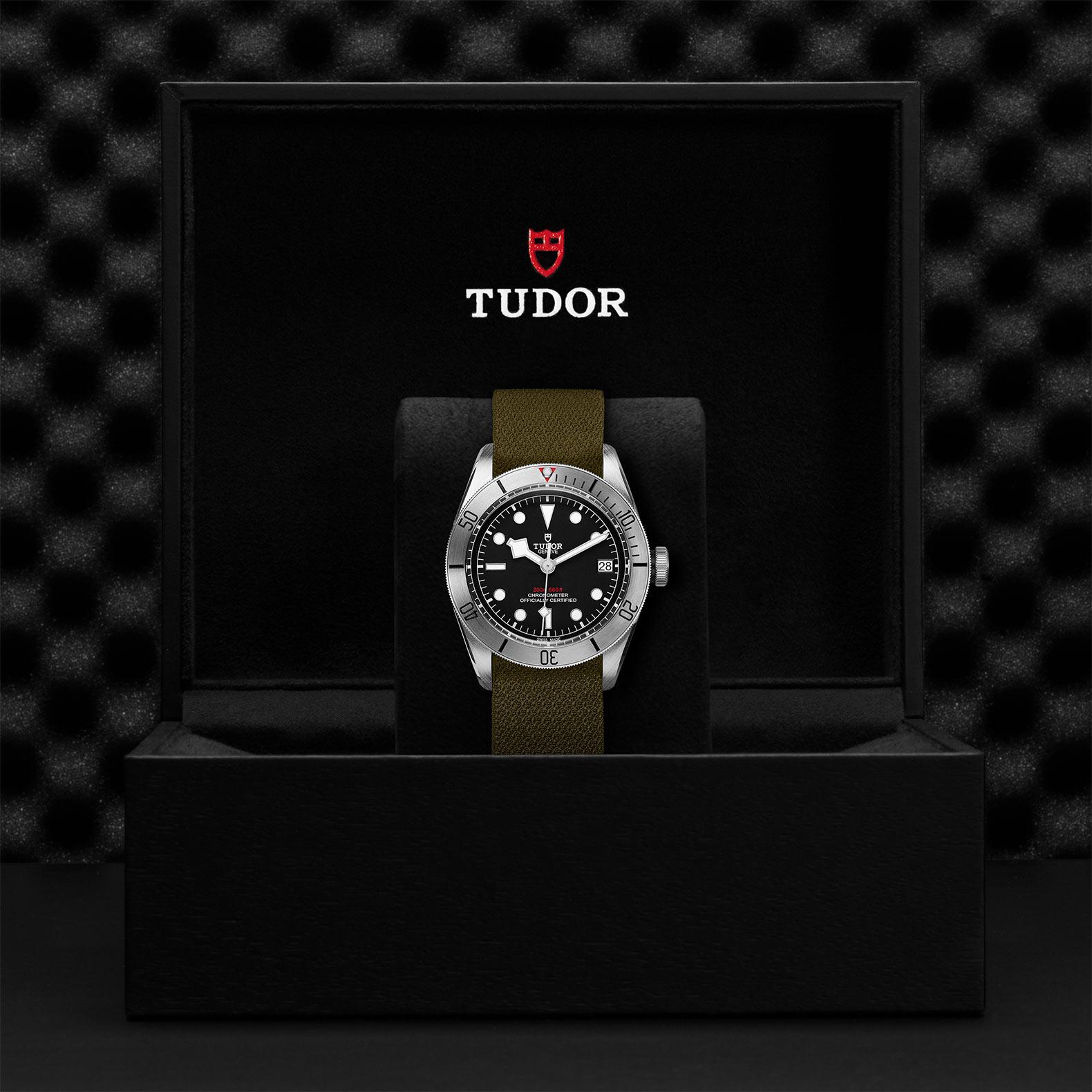 Tudor_M79730-0004