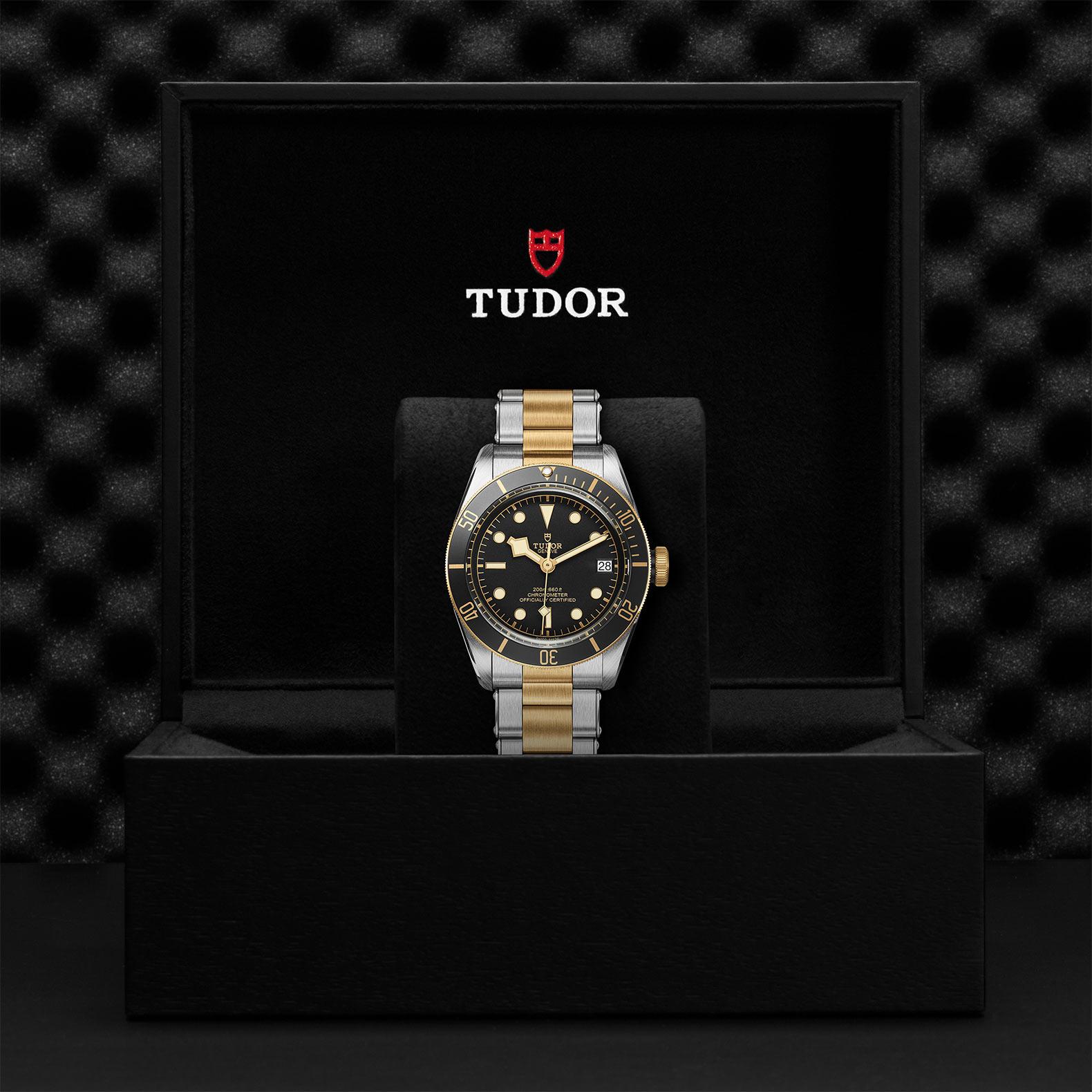 Tudor_M79733n-0008